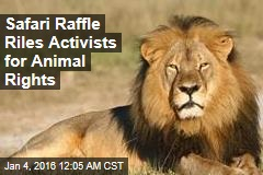 No Shame? Safari Launches Raffle to Hunt Lions