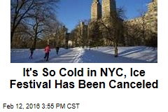 It's So Cold in NYC, Ice Festival Has Been Canceled