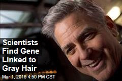 Scientists Find Gene Linked to Gray Hair