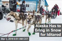 Alaska Has to Bring in Snow for Iditarod