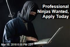 Professional Ninjas Wanted, Apply Today