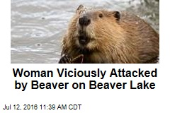Woman Viciously Attacked by Beaver on Beaver Lake