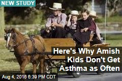 Here's Why Amish Kids Don't Get Asthma as Often