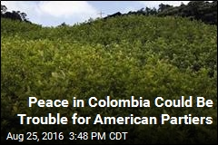 FARC Deal Endangers US' Cocaine Supply