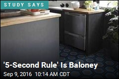 '5-Second Rule' Is Baloney