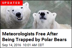 Polar Bears Swarm Weather Station, Trap Meteorologists