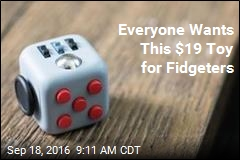 Everyone Wants This $19 Toy for Fidgeters