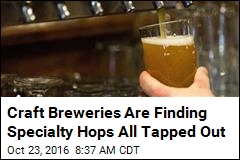 Craft Breweries Are Finding Specialty Hops All Tapped Out