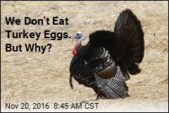 We Don't Eat Turkey Eggs. But Why?