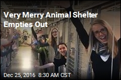 Very Merry Animal Shelter Empties Out