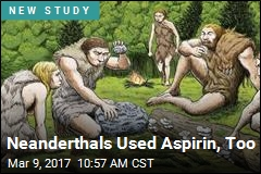 Neanderthals Used Aspirin, Too