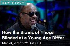 How the Brains of Those Blinded at a Young Age Differ
