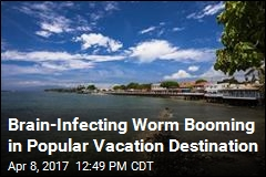Brain-Infecting Worm Booming in Popular Vacation Destination