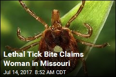 Rare Tick-Borne Virus Kills Woman in Missouri