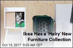 Ikea Is Now Catering to Cats and Dogs