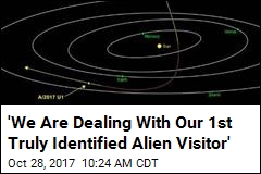 'We Are Dealing With Our 1st Truly Identified Alien Visitor'