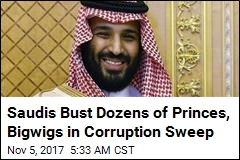Saudis Bust Dozens of Princes, Bigwigs in Corruption Sweep