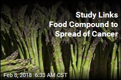 Study Links Food Compound to Spread of Cancer
