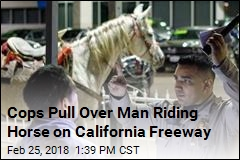 Cops Pull Over Man Riding Horse on California Freeway