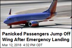 Frantic Passengers Jump Off Wing After Emergency Landing