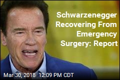 Schwarzenegger Has Emergency Open-Heart Surgery: Report