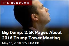 Big Dump: 2.5K Pages About 2016 Trump Tower Meeting