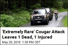 Cougar Kills 1, Mauls Another in Washington State Attack