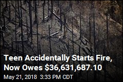 Teen Accidentally Starts Fire, Now Owes $36,631,687.10