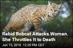 Rabid Bobcat Attacks Woman. She Throttles It to Death