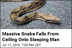 6-Foot Boa Constrictor Falls From Ceiling Onto Sleeping Man