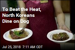 To Beat the Heat, North Koreans Dine on Dog