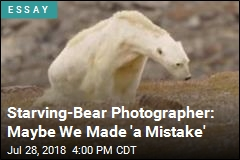 Starving-Bear Photographer: Maybe We Made 'a Mistake'