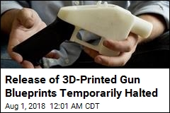 Judge Blocks Release of 3D-Printed Gun Blueprints
