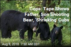 Cops: Tape Shows Father, Son Shooting Bear, 'Shrieking' Cubs