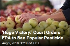 Court Orders EPA to Reverse Course, Ban Pesticide