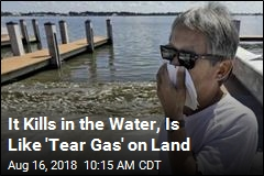 It Kills in the Water, Is Like 'Tear Gas' on Land