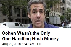 Cohen Wasn't the Only One Handling Hush Money