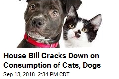 House Bill Cracks Down on Consumption of Cats, Dogs