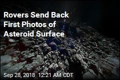 Rovers Send Back First Photos of Asteroid Surface