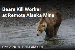 Bears Kill Worker at Remote Alaska Mine