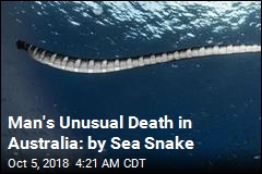 Man's Sea Snake Death Believed to Be Australia's First