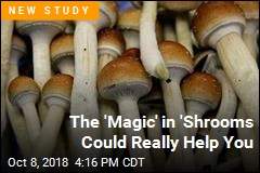 The 'Magic' in 'Shrooms Could Really Help You
