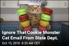 Ignore That Cookie Monster Cat Email From State Dept.