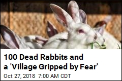 100 Dead Rabbits and a 'Village Gripped by Fear'