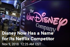 Disney Reveals Name of New Netflix Rival
