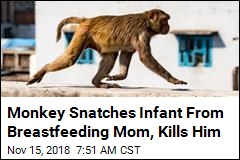 Monkey Snatches Newborn From Mother's Arms, Kills Him