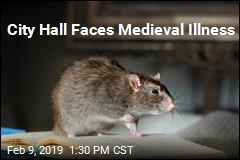 City Hall Faces Medieval Illness