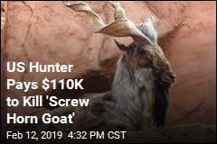 Trophy Hunter Pays $110K to Kill 'Screw Horn Goat'