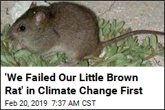 Climate Change Has Wiped Out This Mammal