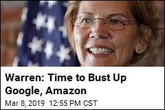 In the Crosshairs of Elizabeth Warren's New Plan: Big Tech